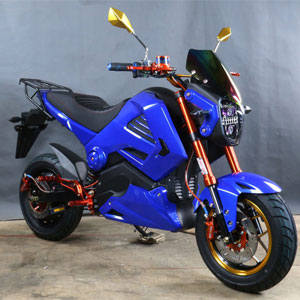 Ninja Electric Bike Full View